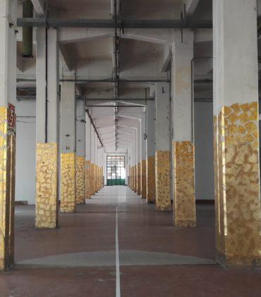 Uno spazio unico l'ex-Manifattura Tabacchi di Firenze