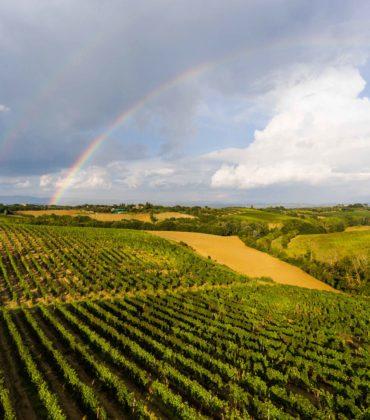 A cena da Burde con Carpineto Wines