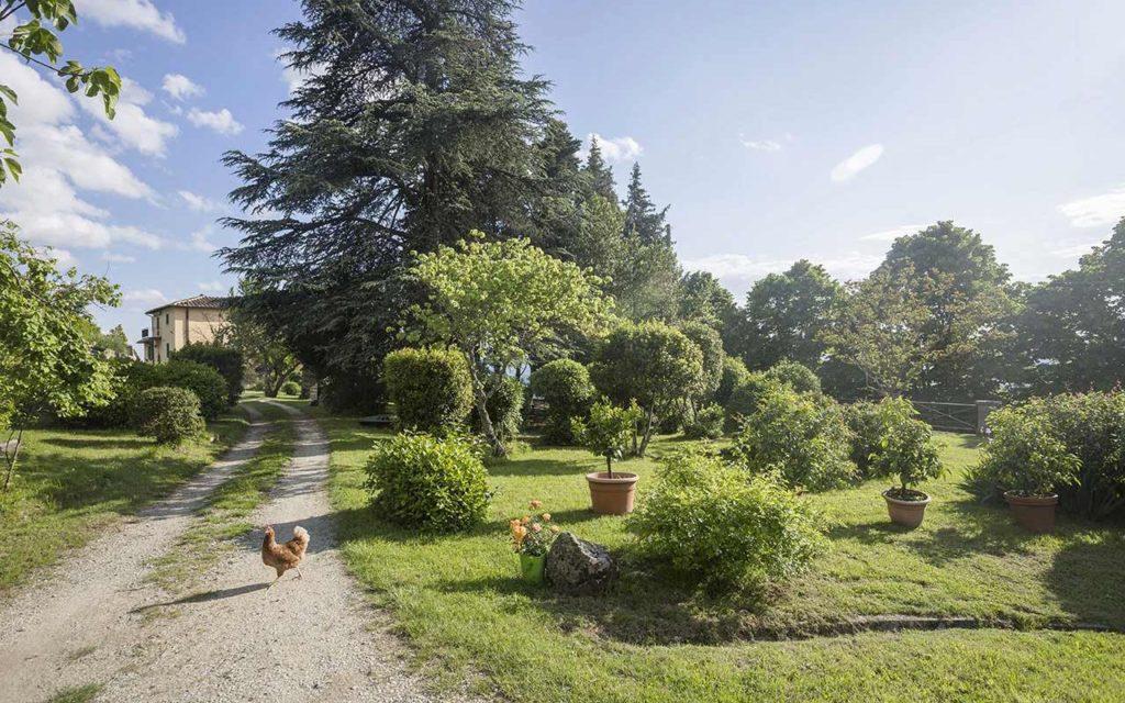 Reggello Casa Cares giardino