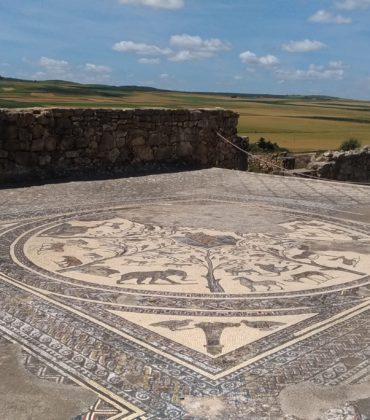 Volubilis e Meknes: una tranquilla giornata in Marocco