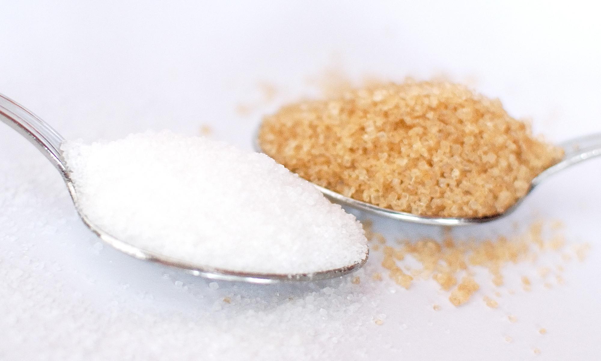 Zucchero nutrizionista