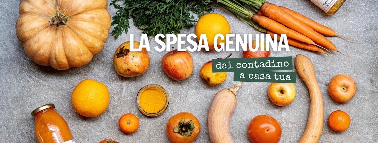 Ecommerce Genuino.Zero startup