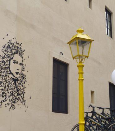 FAI – TSH Firenze: street-art a palazzo